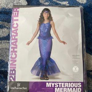 Other - Girls Mermaid Costume Sz L (12-14)